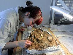Freilegen von Fund-Befund der weiblichen Bestattung aus dem Hildesheimer Dom
