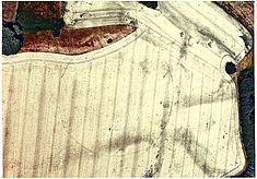 Luftbild Gädebehn, Ausgrabung DAI, 26.06.2008, Bildnummer #2935